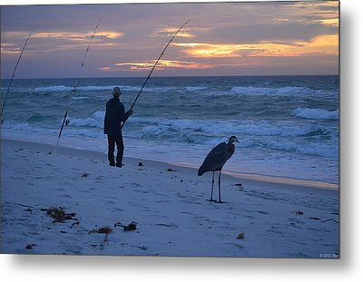 Metal Print featuring the photograph Harry The Heron Fishing With Fisherman On Navarre Beach At Sunrise by Jeff at JSJ Photography