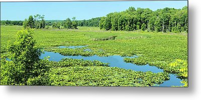 Metal Print featuring the photograph Hartstown Marsh Panorama by Dennis Lundell