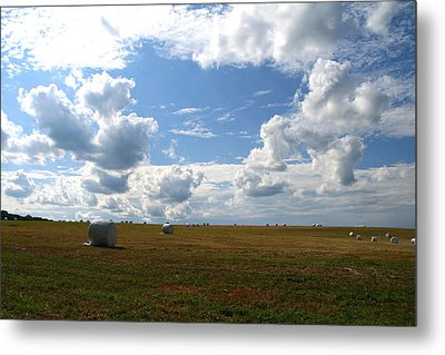 Metal Print featuring the photograph Harvest Blue  by Neal Eslinger