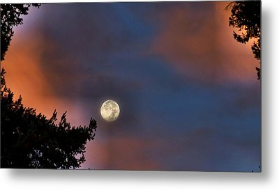 Metal Print featuring the photograph Harvest Moon by Julia Hassett