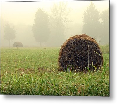 Harvest Metal Print by Steve Godleski