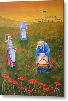 Harvesting Poppies In Tuscany Metal Print by Pamela Allegretto