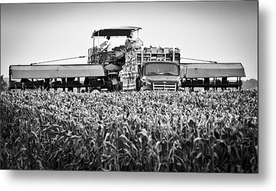 Metal Print featuring the photograph Harvesting Time by Ricky L Jones