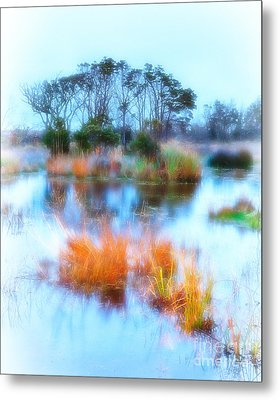 Hatteras Wetlands On The Outer Banks Metal Print by Dan Carmichael