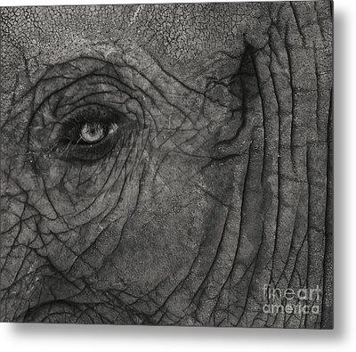 Haunting Eye Metal Print