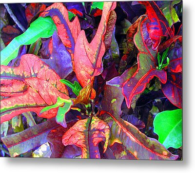 Hawaiian Foliage Metal Print by Jean Hall