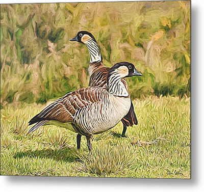 Hawaiian Goose Couple Metal Print