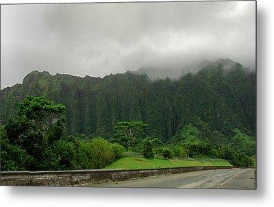 Hawaiian Rain Forest Metal Print
