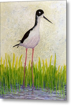 Hawaiian Stilt Metal Print