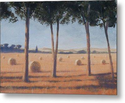 Hay Bales And Pines, Pienza, 2012 Acrylic On Canvas Metal Print