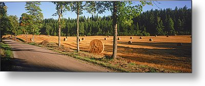 Hay Bales In A Field, Flens, Sweden Metal Print
