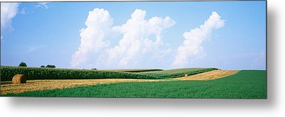 Hay Bales In A Field, Jo Daviess Metal Print by Panoramic Images