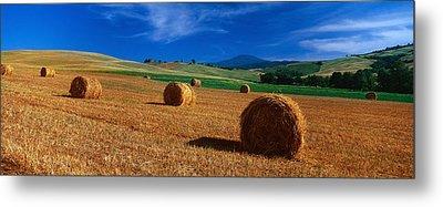 Hay Bales In A Field, Val Dorcia, Siena Metal Print