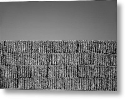 Hay Metal Print by Peter Tellone