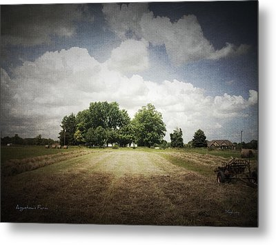 Haying At Angustown Metal Print by Cynthia Lassiter