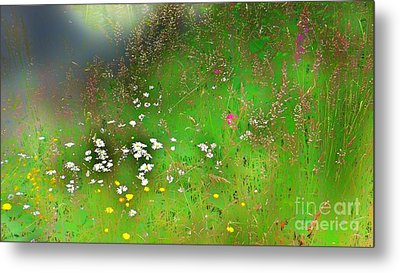 Hazy Meadow Abstract Metal Print