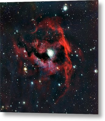 Head Of Seagull Nebula Metal Print