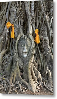 Head Of The Sand Stone Buddha Image Metal Print