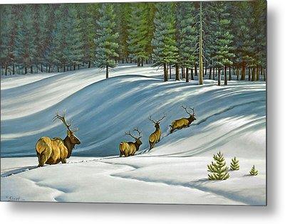 Heading For Timber - Elk Metal Print by Paul Krapf
