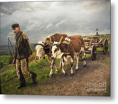 Heading Home Metal Print by Deborah Strategier