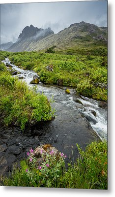 Headwaters In Summer Metal Print