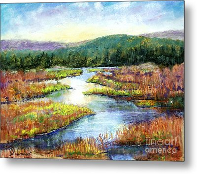 Headwaters Of Blackwater Metal Print by Bruce Schrader