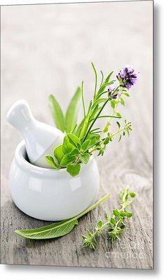 Healing Herbs Metal Print by Elena Elisseeva