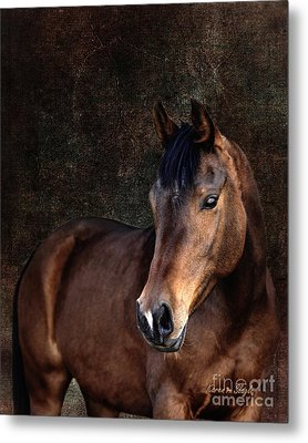 Metal Print featuring the photograph Heart by Karen Slagle