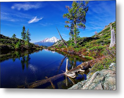 Heart Lake And Mt Shasta Reflection Metal Print by Scott McGuire