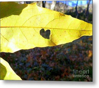 Heart Leaf Metal Print by Marlene Rose Besso