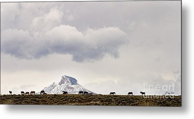 Heart Mountain Horses Metal Print by J L Woody Wooden