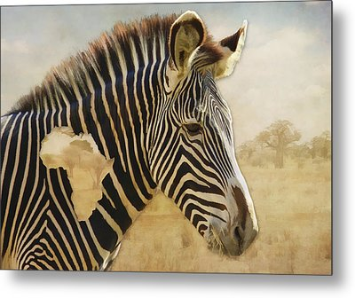 Metal Print featuring the digital art Heart Of Africa by Kathleen Holley