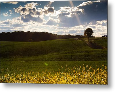 Heart Of Nature Metal Print