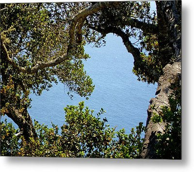 Heart Of Nepenthe - Big Sur Metal Print by Phoenix The Moody Artist
