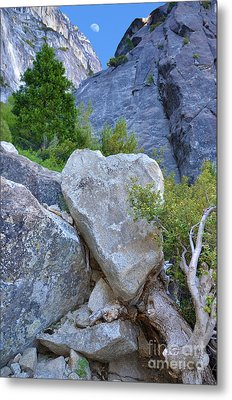 Heart Rock In Yosemite Metal Print