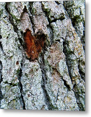 Metal Print featuring the photograph Heart Wood by Joy Hardee
