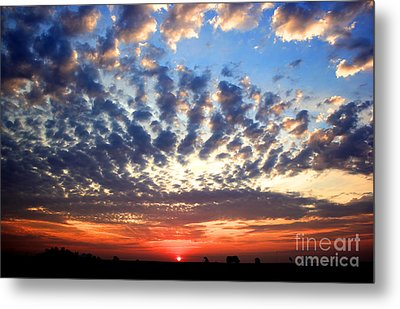 Heartland Sunrise Metal Print by Thomas Danilovich