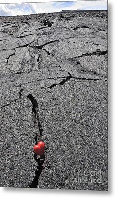 Heartshape In Crack Of Cooled Pahoehoe Lava Metal Print by Sami Sarkis