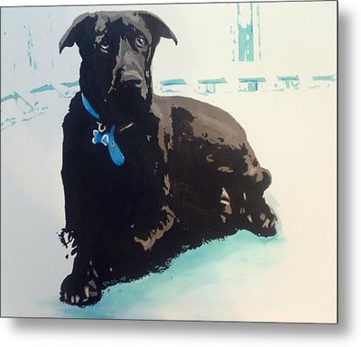 Heathers Dog Metal Print