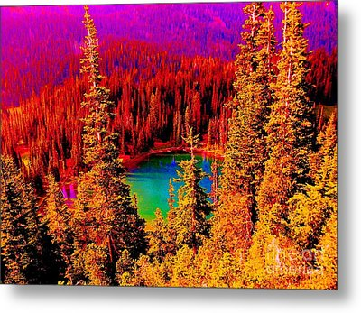 Heaven And Nature Sing Metal Print by Ann Johndro-Collins