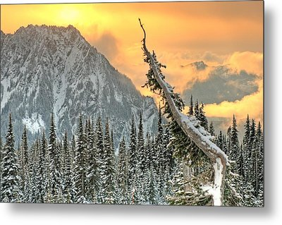 Metal Print featuring the photograph Heavenly by Jeff Cook