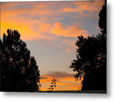 Heavenly Orange Metal Print by Roseann Errigo