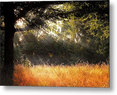 Heaven's Light Metal Print