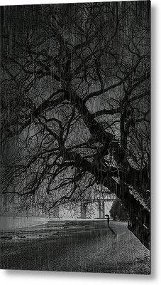 Heavy Rain Metal Print by Svetlana Sewell