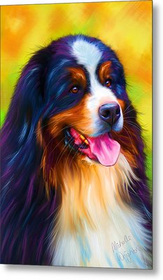 Colorful Bernese Mountain Dog Painting Metal Print by Michelle Wrighton