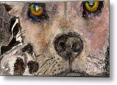 Hello Dog Metal Print