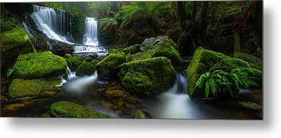 Hello Horseshoe Metal Print by Jason L. Stephens