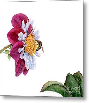 Hello My Flower Metal Print by Amy Kirkpatrick