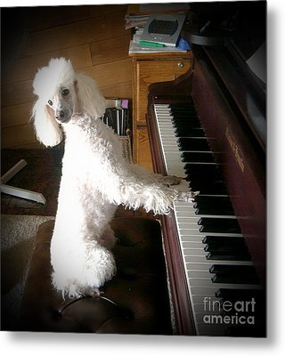 Henri Plays The Piano Metal Print