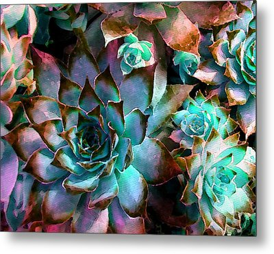 Hens And Chicks Series - Verdigris Metal Print by Moon Stumpp